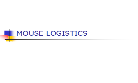 Mouse Logistics - South Africa